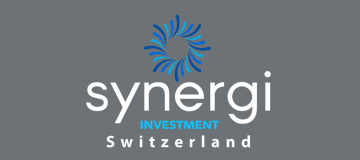 https://dvasyl.com/wp-content/uploads/2021/07/synergi-investment.png